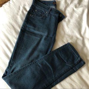 James Jeans Twiggy Lafayette Skinny Jeans